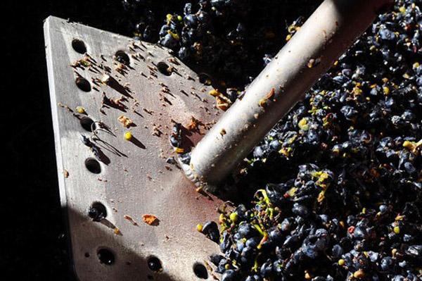 Victorian Pinot